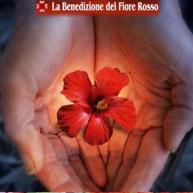 carlita moon mother benedizione del Fiore Rosso